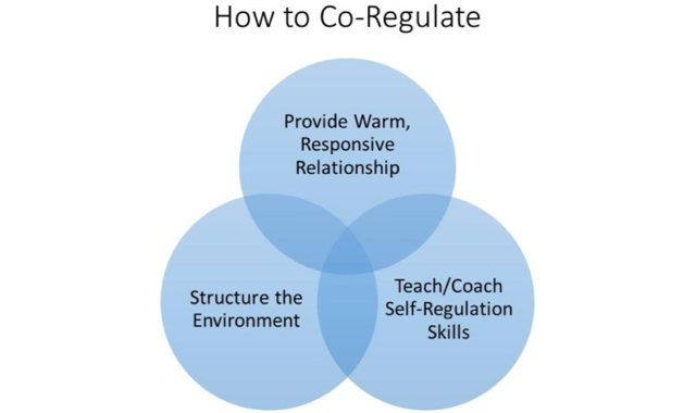Co-regulation
