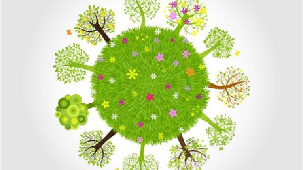 Edutopia graphic of trees around the earth