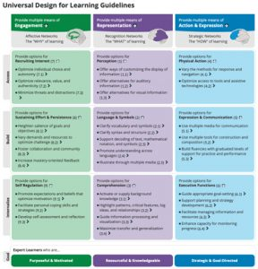A screenshot of UDL guidelines chart